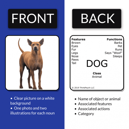 First Nouns ABA Flashcards Front and Back Detail
