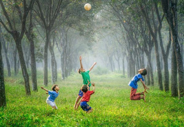 Boys playing with a ball in a grassy field